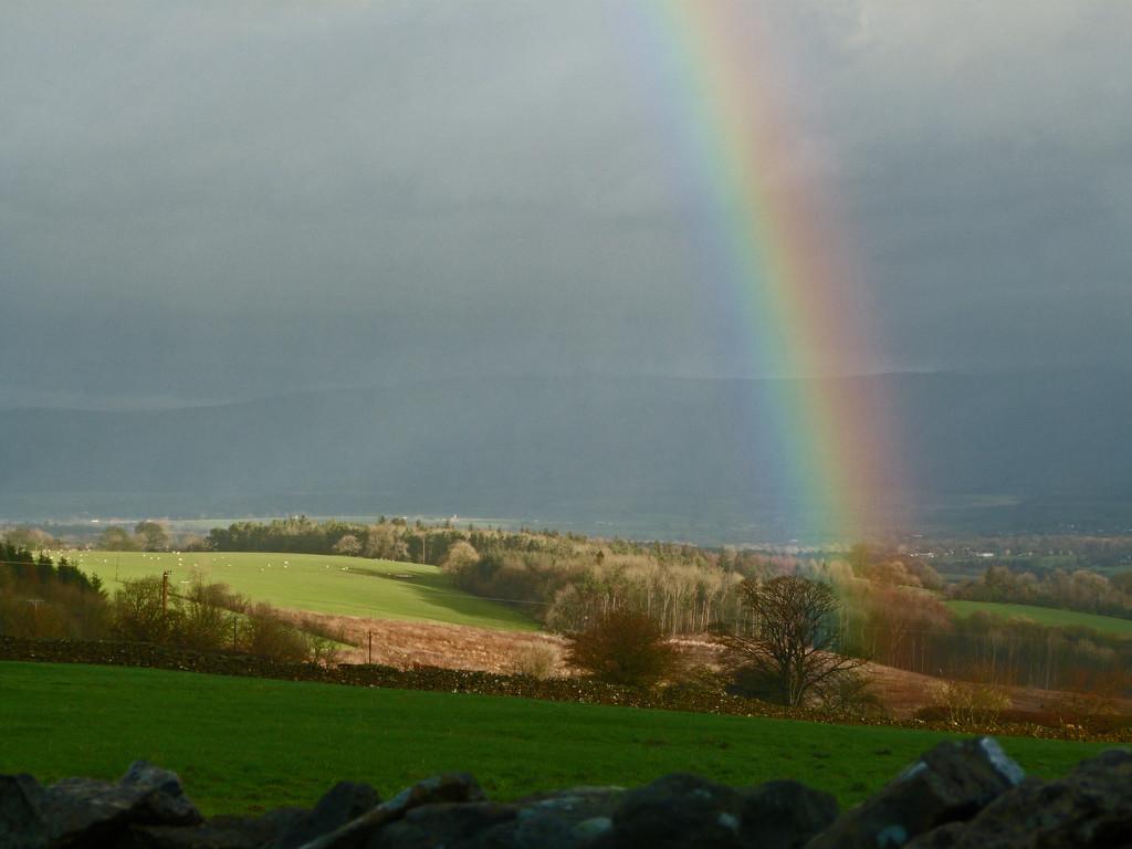 Light and shadow by shirleybankfarm