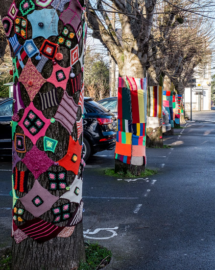 A Year of Days - Day 365: Yarn Bombing by vignouse