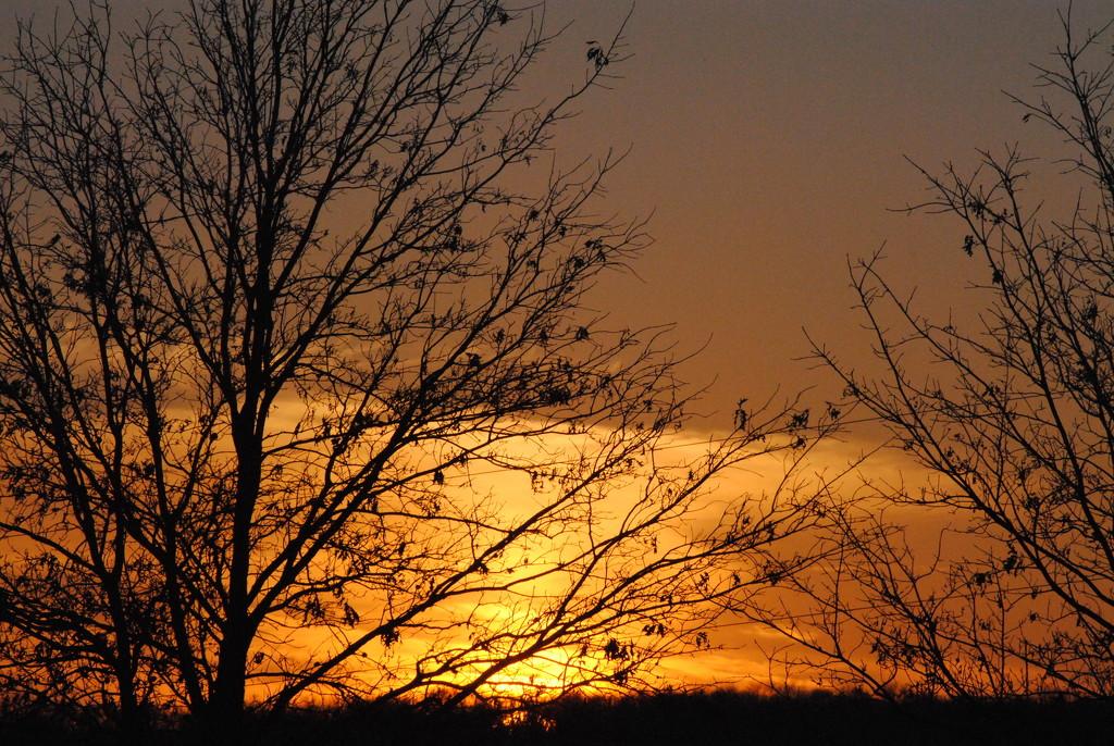 Sun Going Down on 2015 by genealogygenie