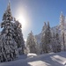 New Years Eve in Winter Wonderland by kiwichick