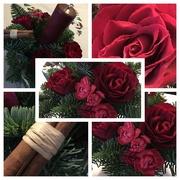 3rd Jan 2009 - Christmas arrangement