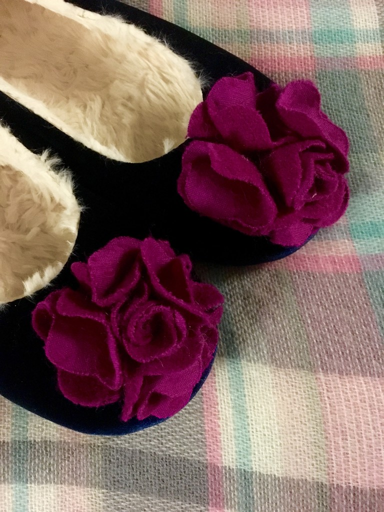 Fluffy slippers by nicolaeastwood