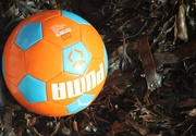 5th Jan 2016 - Lost Ball on the Beach