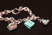 18th Jan 2011 - Charm Bracelet