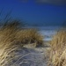 Path to the Beach by teiko