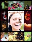 9th Jan 2016 - The Mountain of Butterflies
