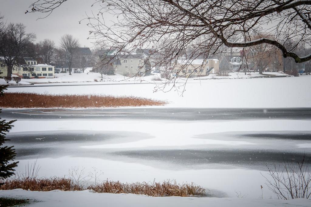 No. One Pond again. by joansmor