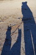 11th Jan 2016 - My Shadow and My Shadows' Shadows.