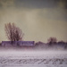wind chill and white outs by jackies365