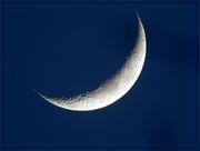 13th Jan 2016 - Crescent Moon January 13