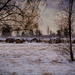 bales of hay on a winter day! by jackies365