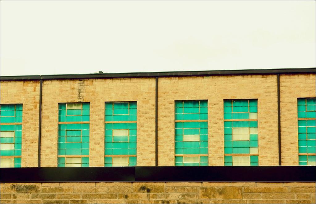 Windows by mcsiegle