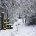 Seeing snow in stile by shepherdman