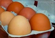 16th Jan 2016 - Eggs