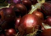 17th Jan 2016 - Onions