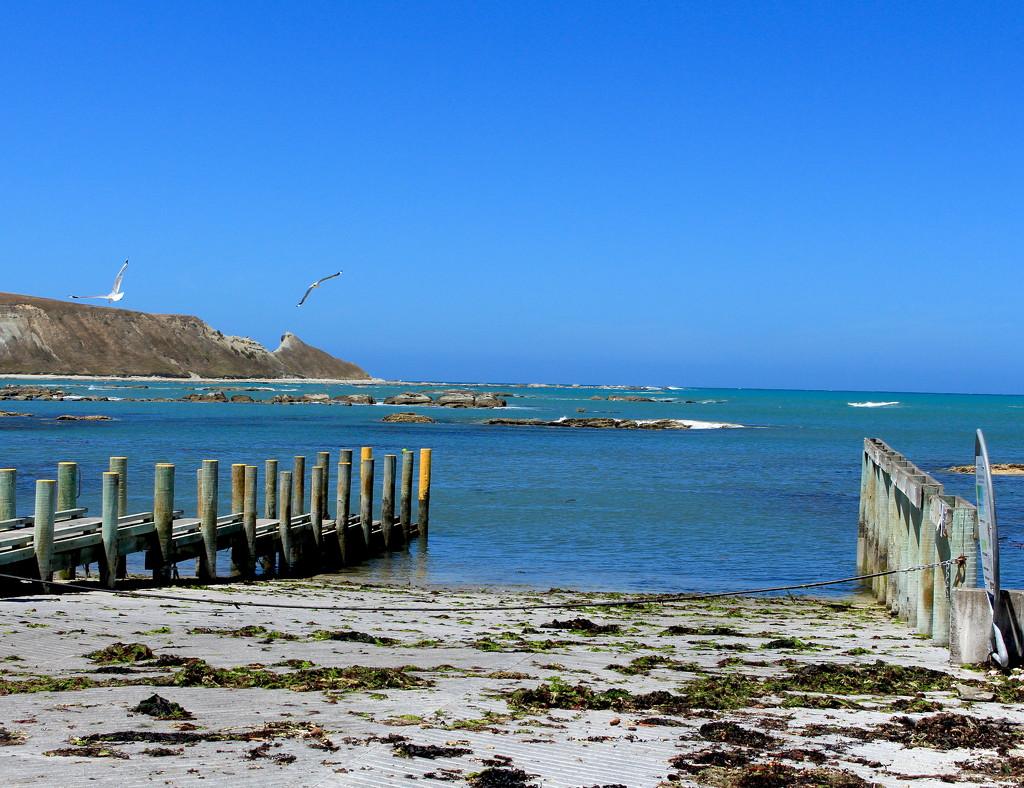 Look to the sea by kiwinanna
