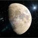Moon Foolery by olivetreeann