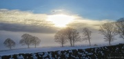19th Jan 2016 - Winter moor