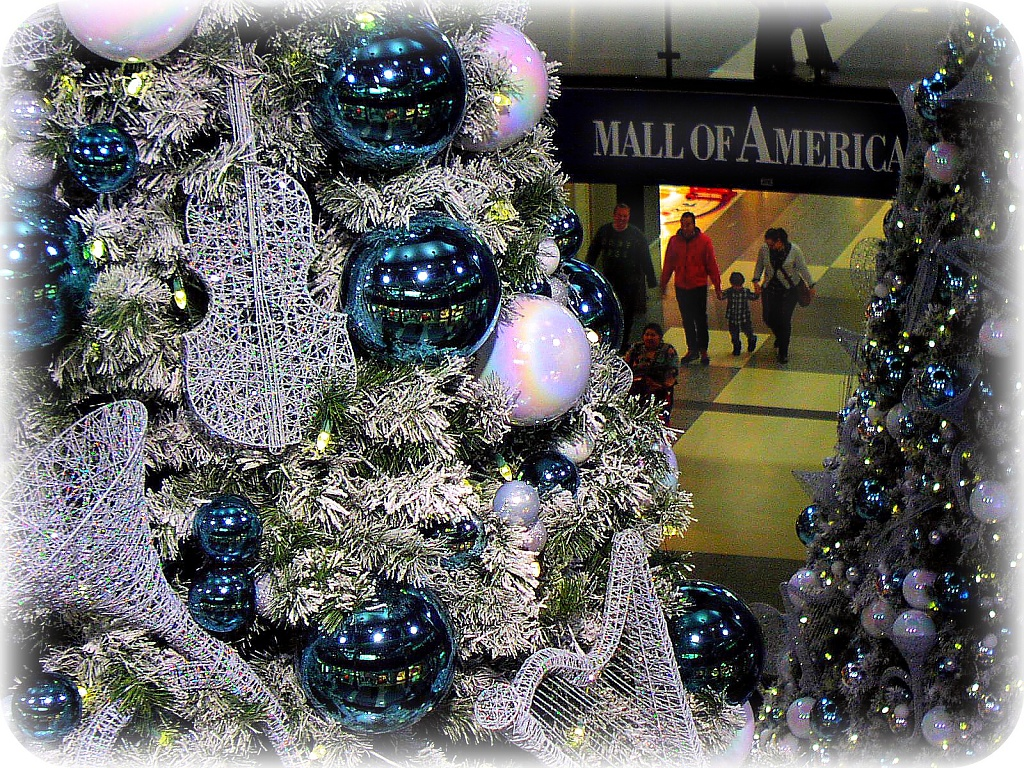 It's beginning to look a lot like Christmas by pfmandeville