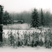 winterscape by northy