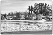 20th Jan 2016 - Winter at the pond