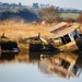 Derelicts at Topsham by swillinbillyflynn