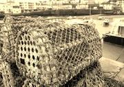25th Jan 2016 - Lobster Pots