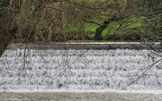 27th Jan 2016 - Over the weir