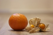 28th Jan 2016 - Clementines and Physalis