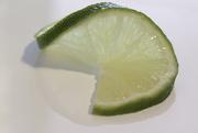 28th Jan 2009 - Lime Twist