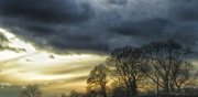 29th Jan 2016 - Winter sun and stormy skies