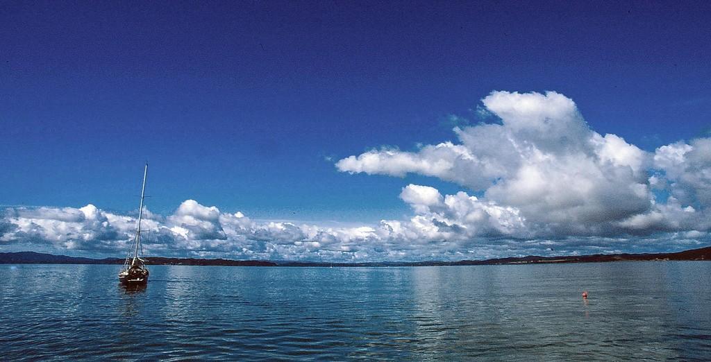 New Zealand Bay of Islands by judithdeacon