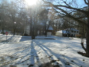 24th Jan 2016 - Snow Melting