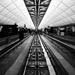 Transit by pistache