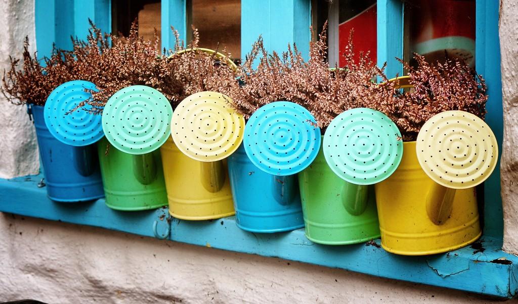 Watering cans by swillinbillyflynn