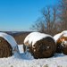 Bales of hay with snow
