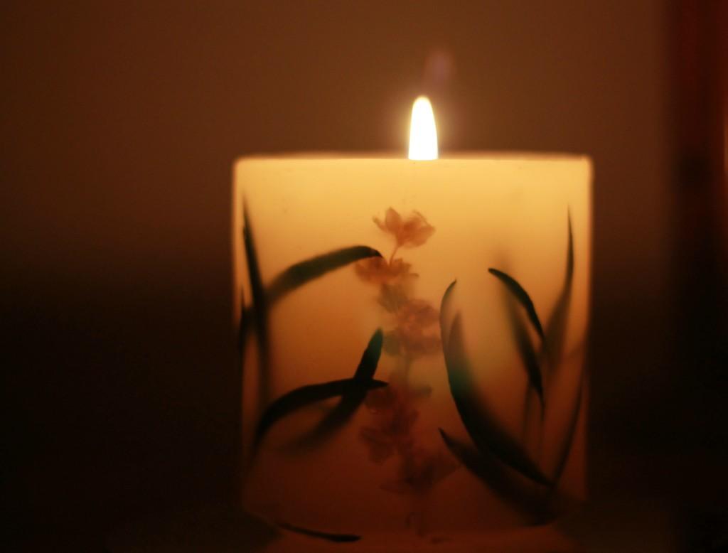 Light by judyc57