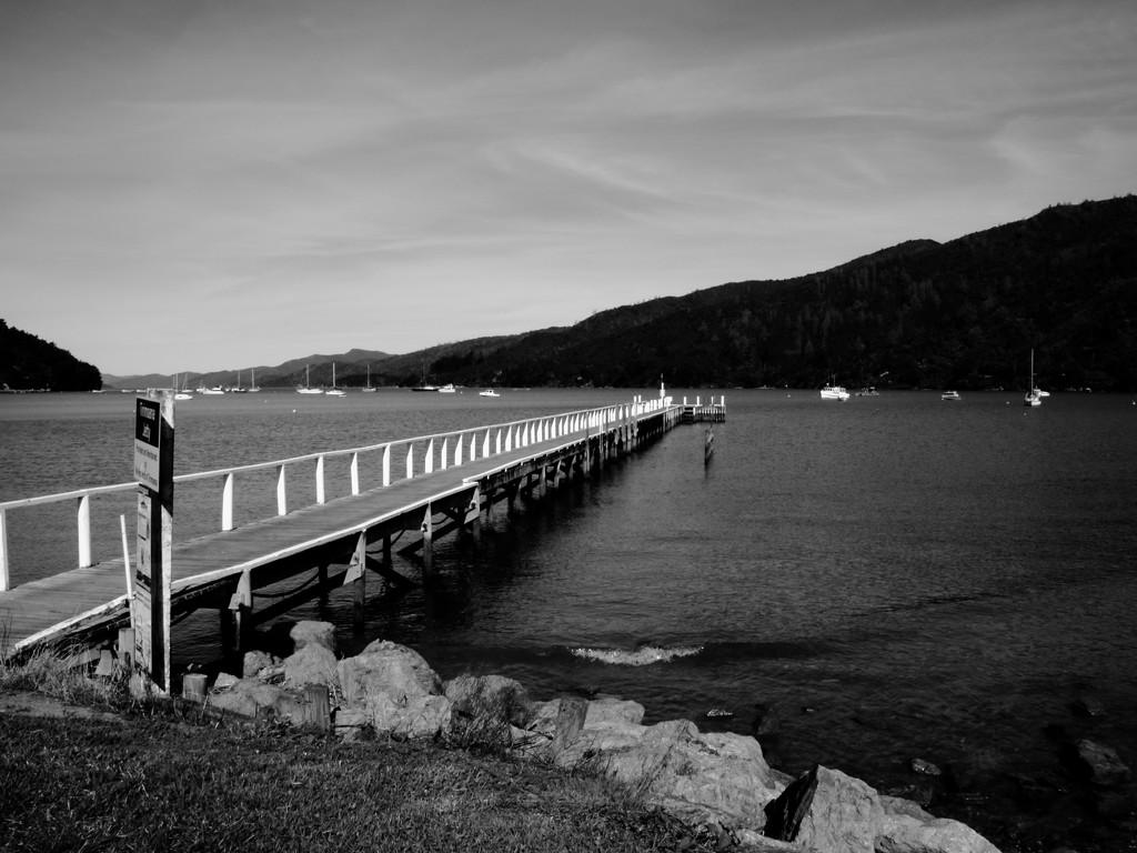 Foreshore jetty by kiwinanna