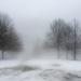 Fog by loweygrace