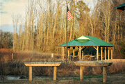3rd Feb 2016 - Nature Preserve Pavilion