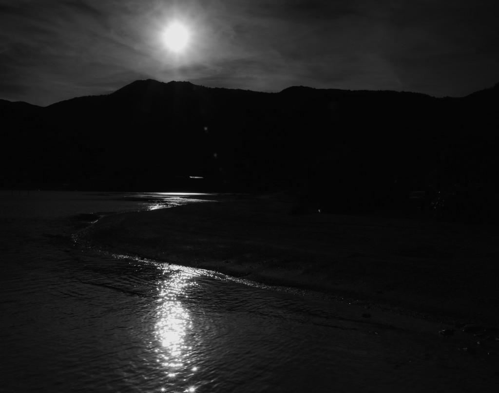 The last of the sunlight by kiwinanna