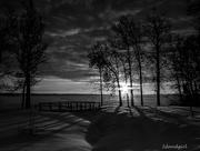 4th Feb 2016 - Guiding Light