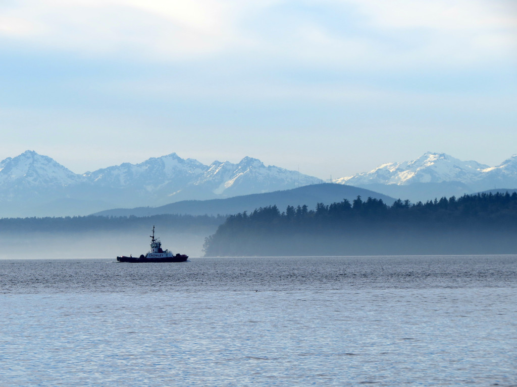Afternoon Mist by seattlite