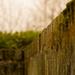 Enclosure by nanderson