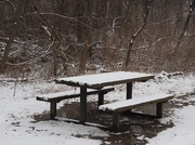 10th Feb 2016 - Lonely Picnic Table