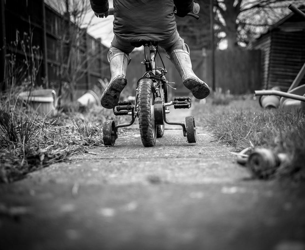 Bike  by newbank