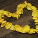 Heart of Petals  by bizziebeeme