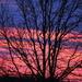 Cloudy Skies by genealogygenie