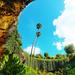 """Umpherston Sinkhole aka """"The Sunken Garden"""""""