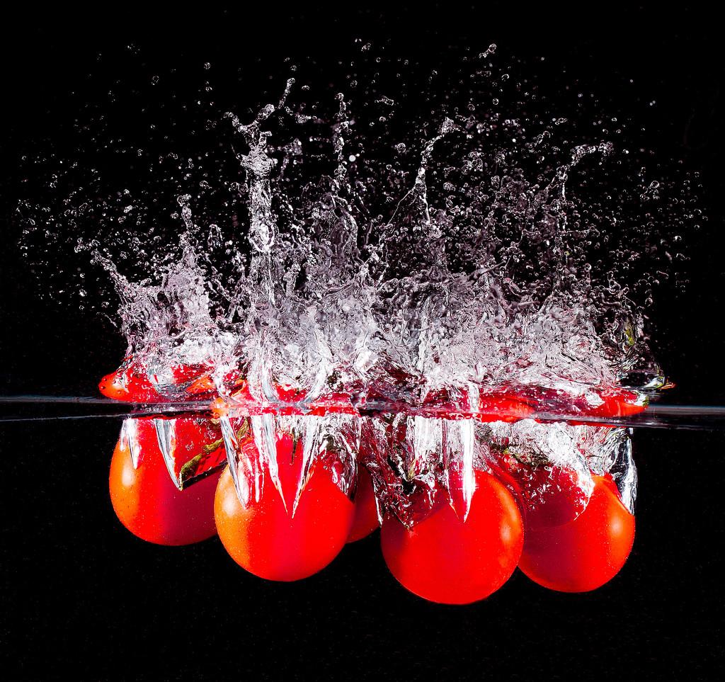 2016 02 14 - Splash of Red by pamknowler